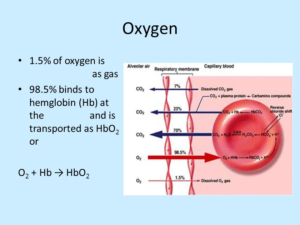 Oxygen 1.5% of oxygen is as gas