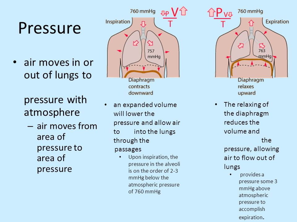 Pressure air moves in or out of lungs to pressure with atmosphere