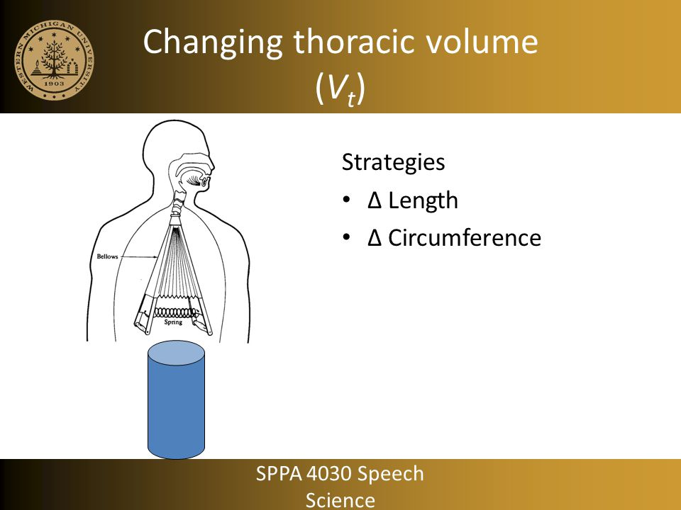 Changing thoracic volume (Vt)
