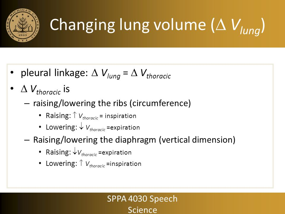 Changing lung volume ( Vlung)