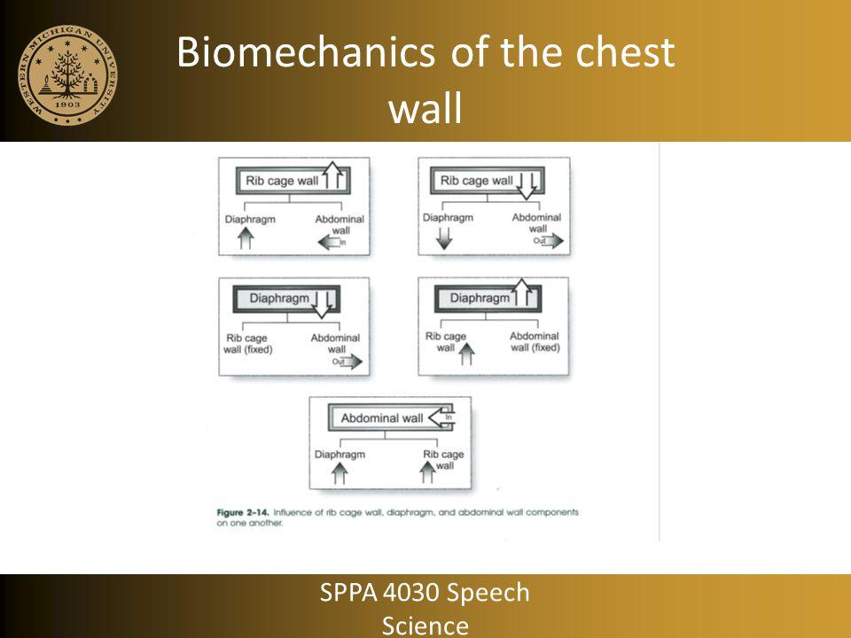 Biomechanics of the chest wall