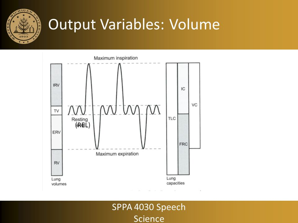 Output Variables: Volume