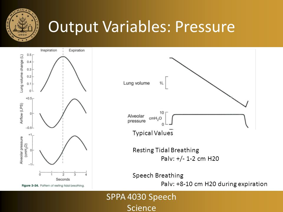 Output Variables: Pressure