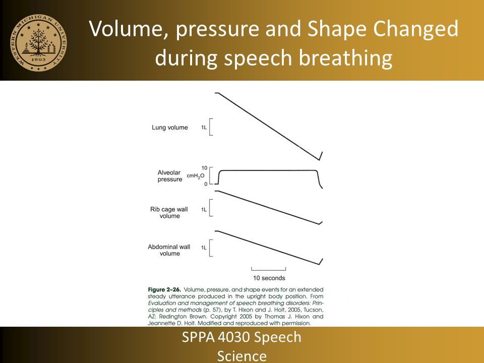 Volume, pressure and Shape Changed during speech breathing