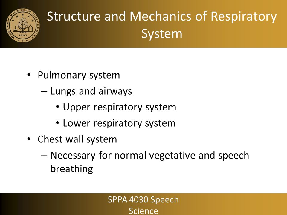 Structure and Mechanics of Respiratory System