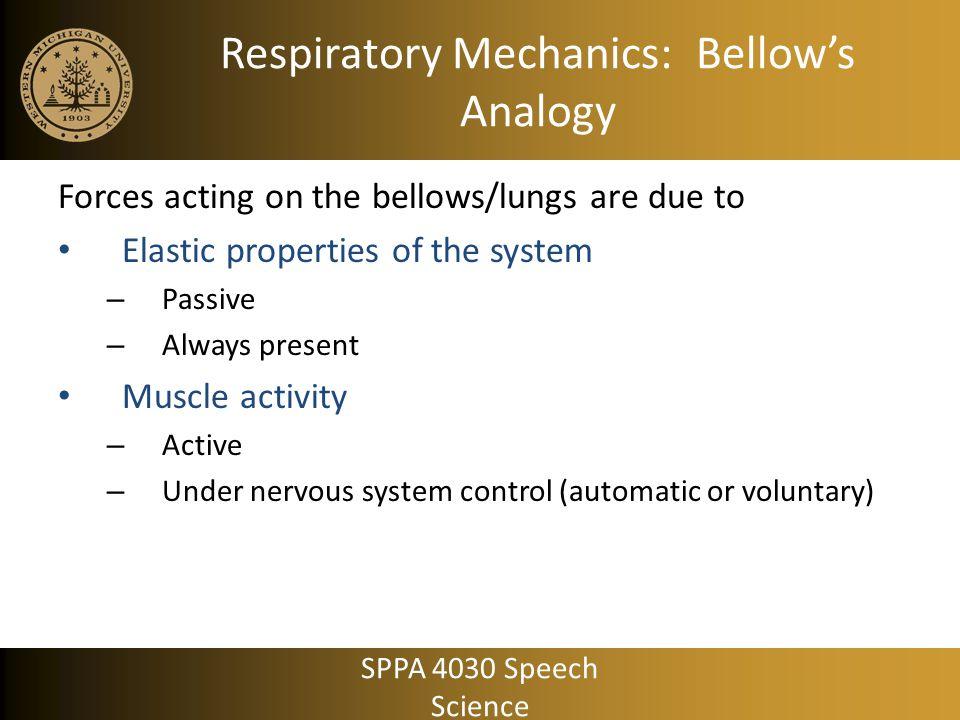 Respiratory Mechanics: Bellow's Analogy