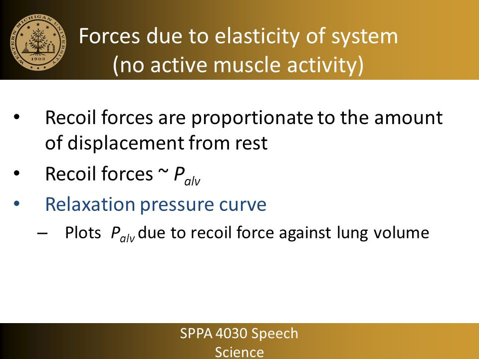 Forces due to elasticity of system (no active muscle activity)