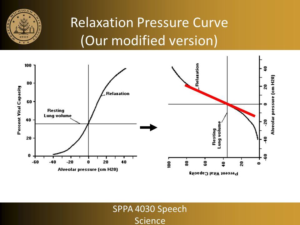 Relaxation Pressure Curve (Our modified version)