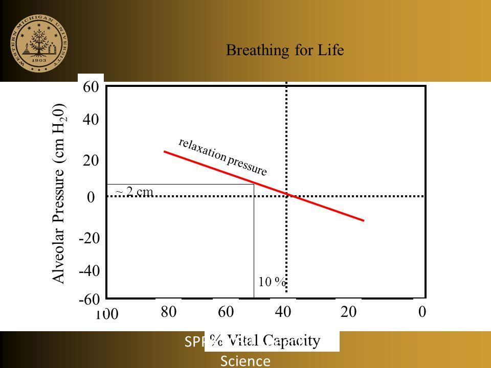 Alveolar Pressure (cm H20) 20 60