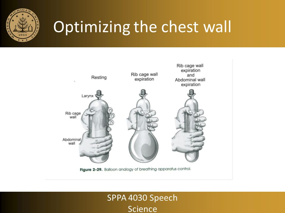 Optimizing the chest wall