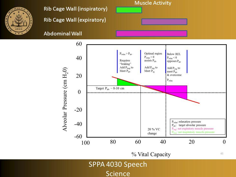 SPPA 4030 Speech Science Muscle Activity Rib Cage Wall (inspiratory)