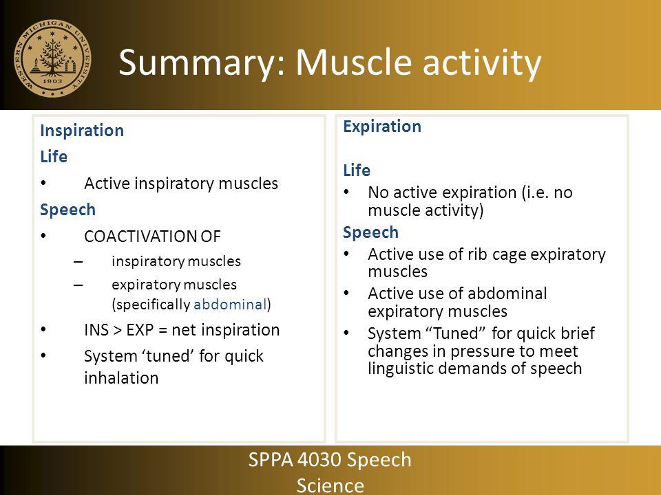 Summary: Muscle activity