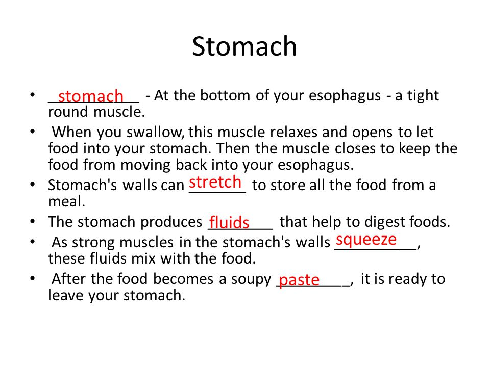 Stomach stomach stretch fluids squeeze paste