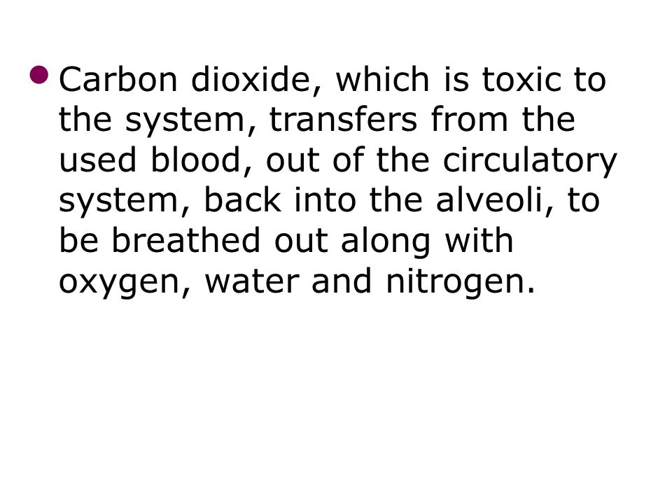 Mechanisms of breathing 33