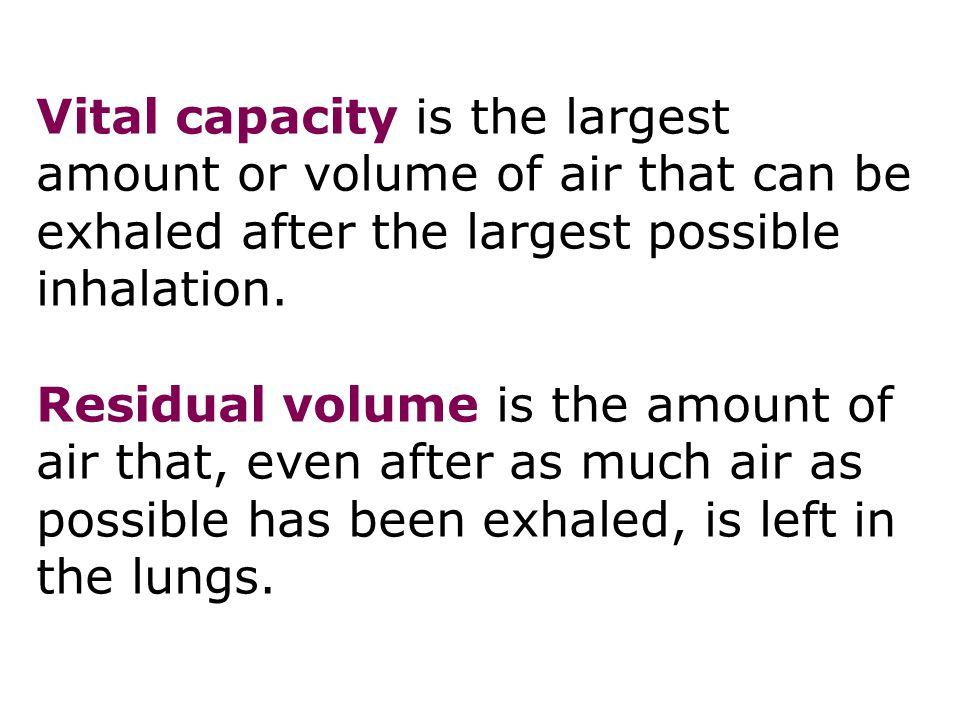 Mechanisms of breathing 36
