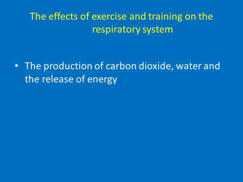 The effects of exercise and training on the respiratory system