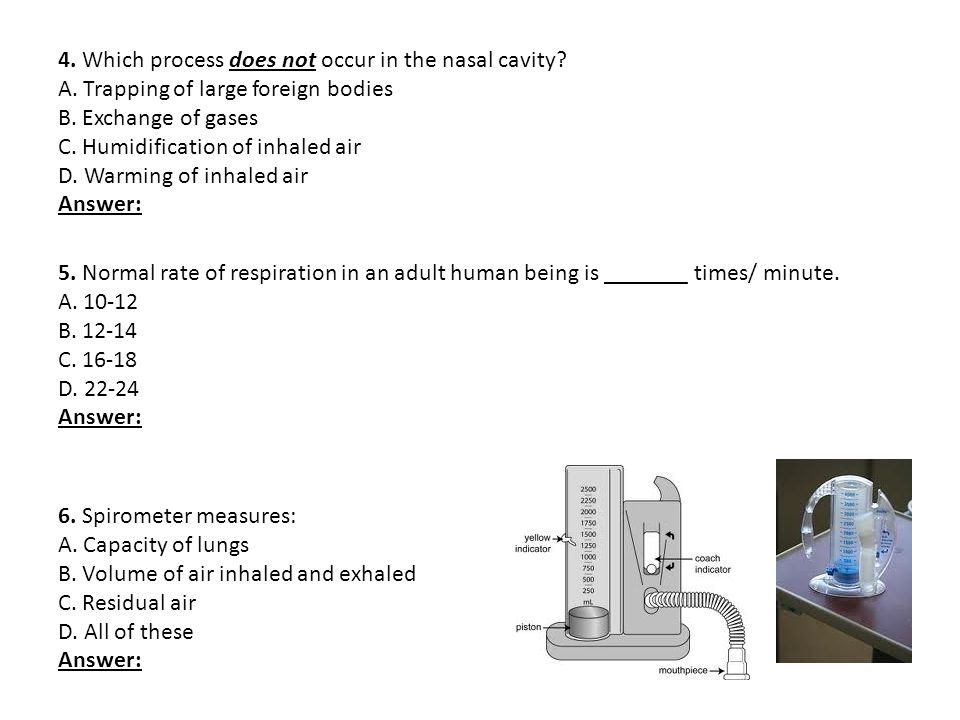 4. Which process does not occur in the nasal cavity. A