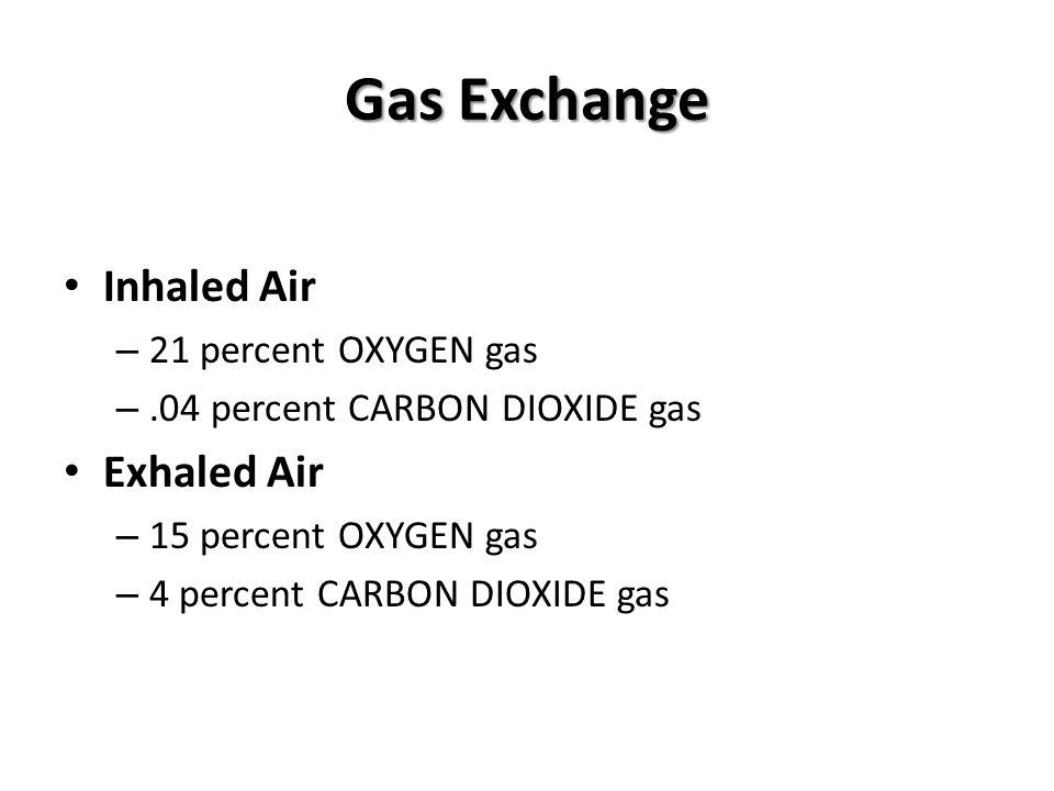 Gas Exchange Inhaled Air Exhaled Air 21 percent OXYGEN gas