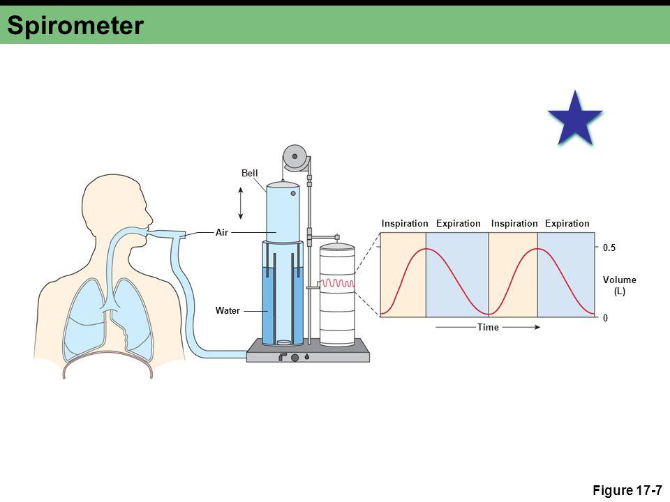 Spirometer Figure 17-7 Bell Inspiration Expiration Inspiration