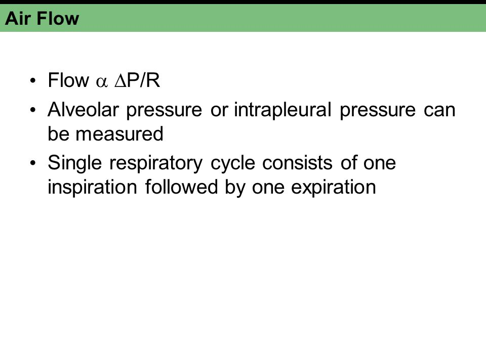Alveolar pressure or intrapleural pressure can be measured