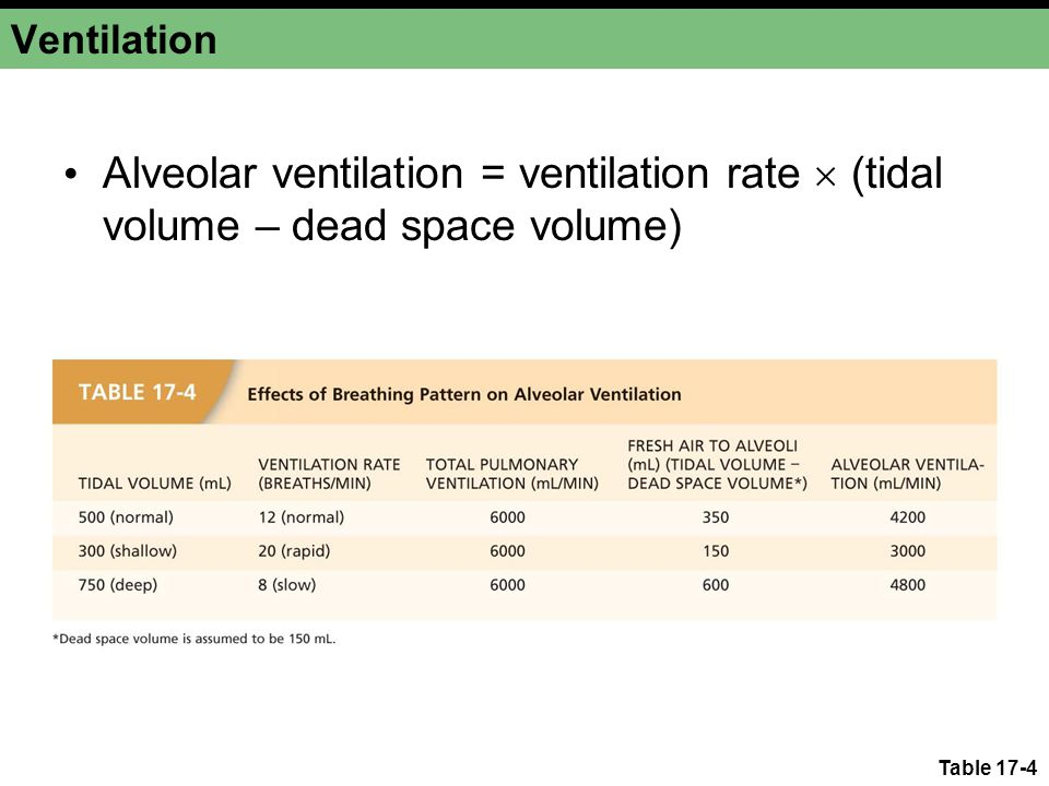 Ventilation Alveolar ventilation = ventilation rate  (tidal volume – dead space volume) Table 17-4