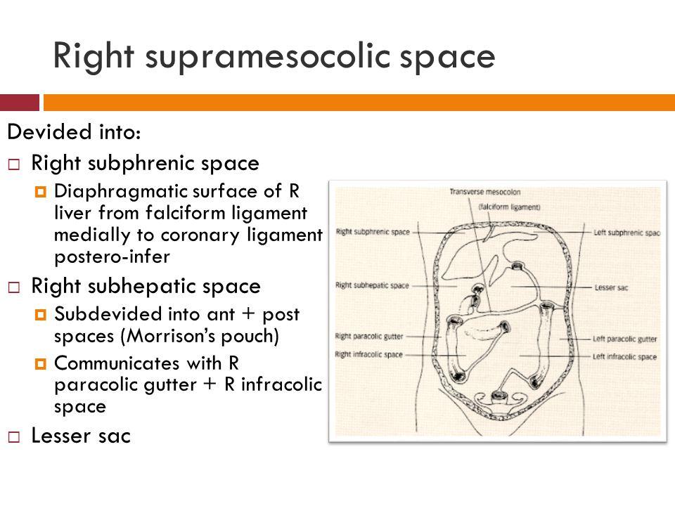 Right supramesocolic space