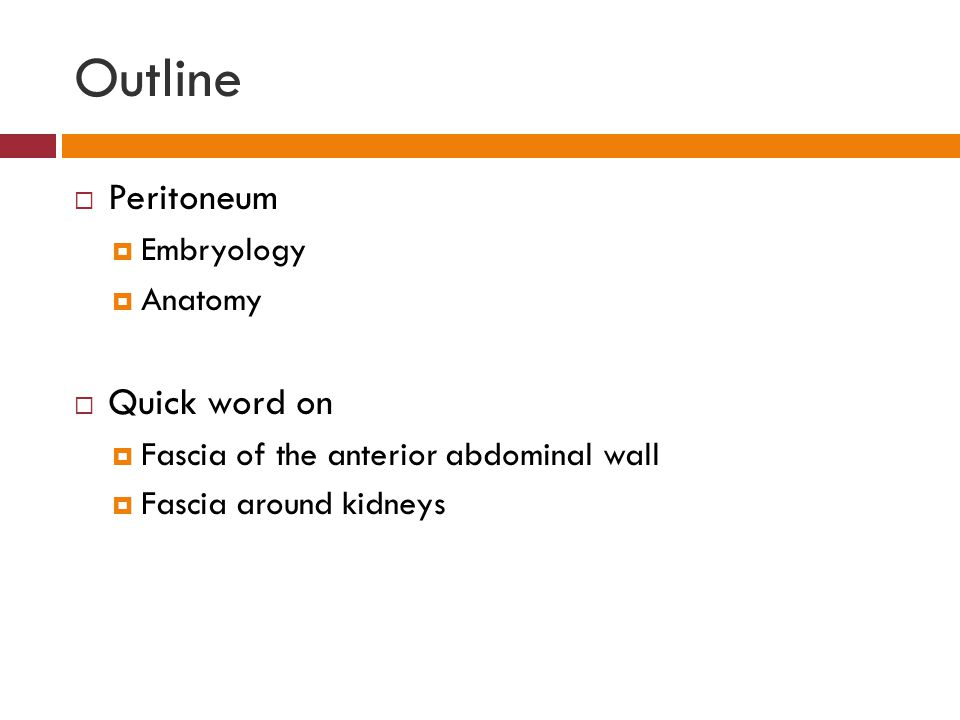 Outline Peritoneum Quick word on Embryology Anatomy