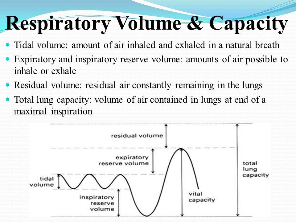 Respiratory Volume & Capacity