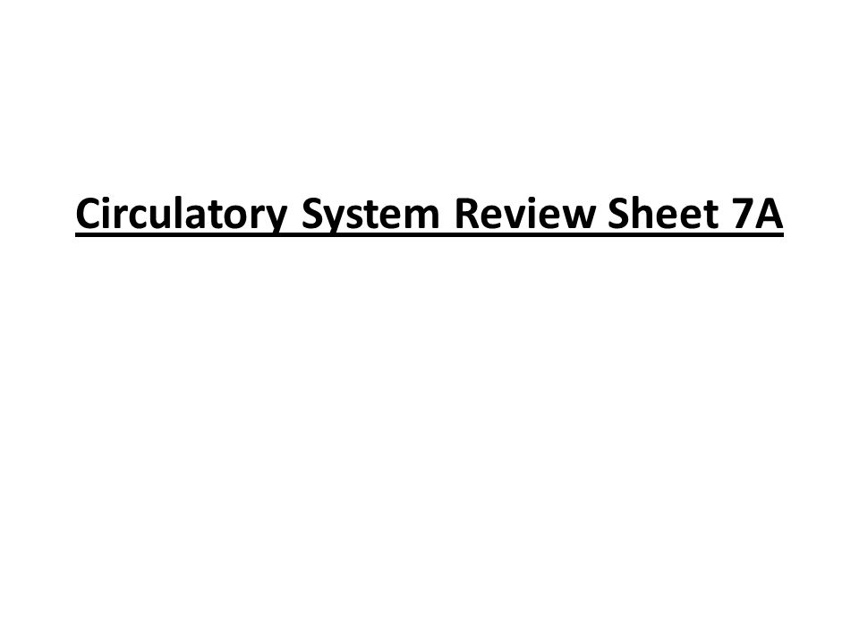Circulatory System Review Sheet 7A