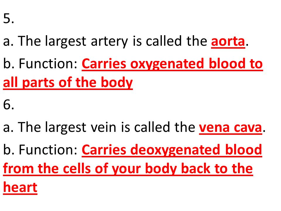 5. a. The largest artery is called the aorta. b