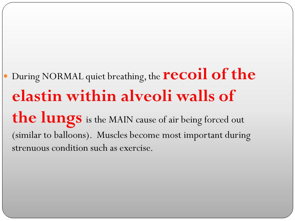 During NORMAL quiet breathing, the recoil of the elastin within alveoli walls of the lungs is the MAIN cause of air being forced out (similar to balloons).