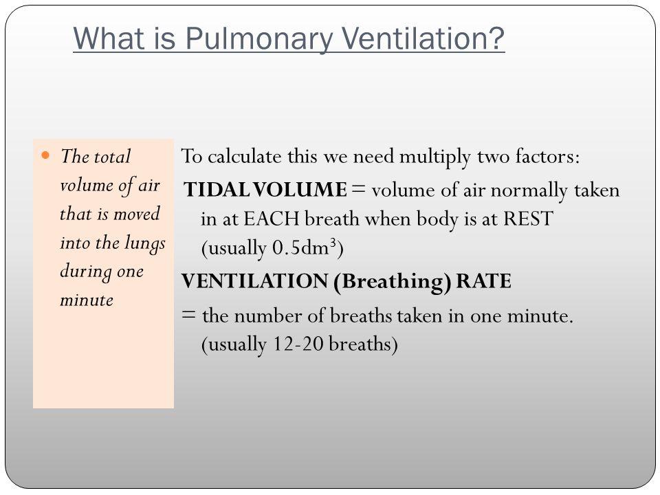 What is Pulmonary Ventilation