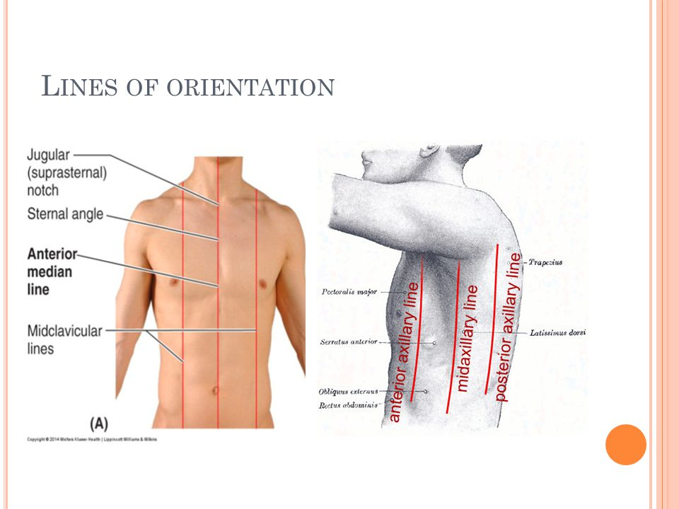 Lines of orientation