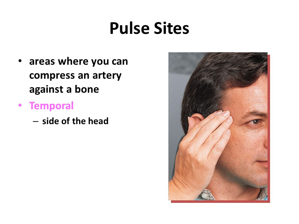 Pulse Sites areas where you can compress an artery against a bone