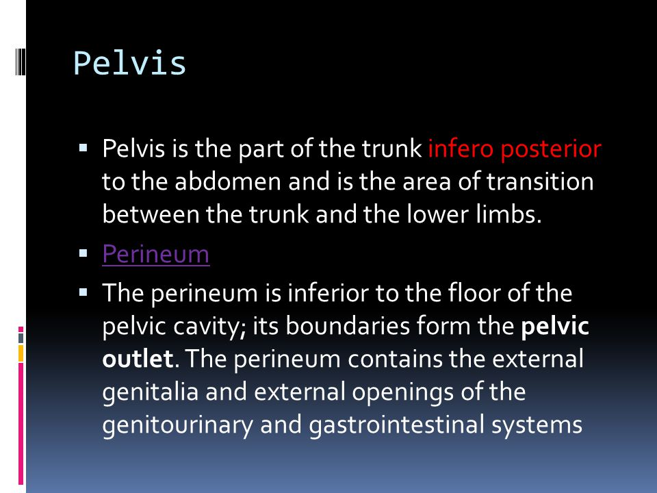 Pelvis Pelvis is the part of the trunk infero posterior to the abdomen and is the area of transition between the trunk and the lower limbs.
