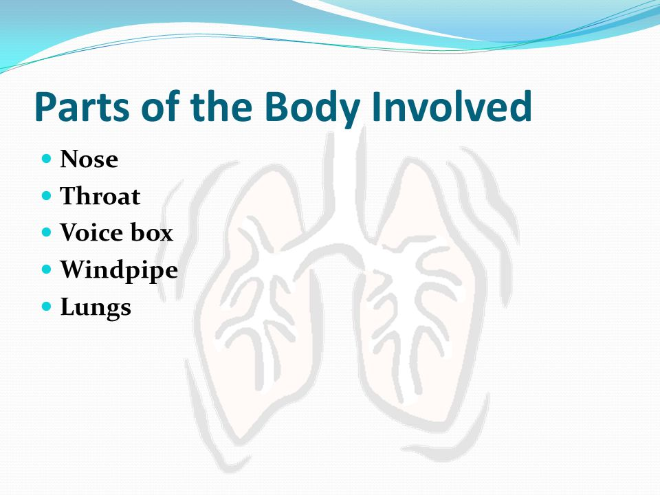 Parts of the Body Involved