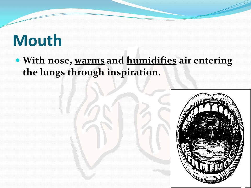 Mouth With nose, warms and humidifies air entering the lungs through inspiration.