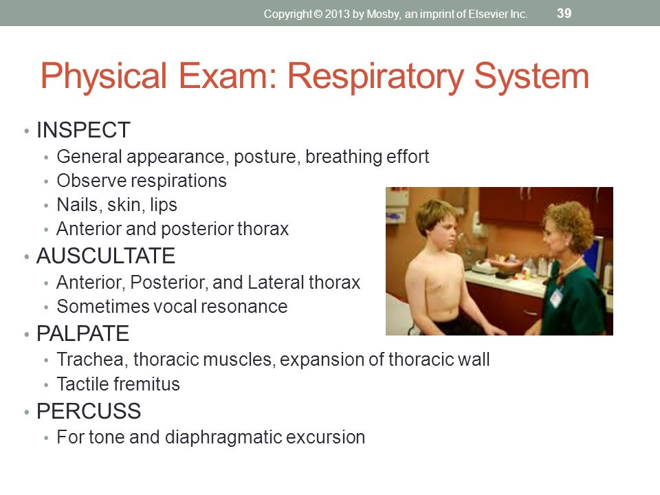 Physical Exam: Respiratory System