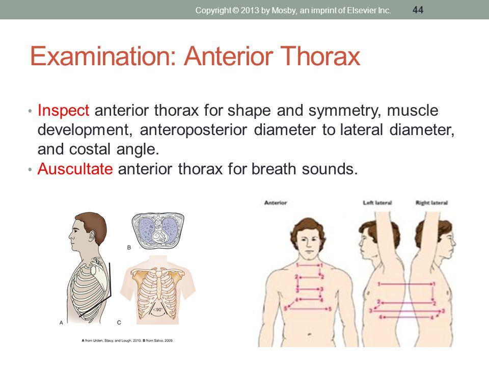 Examination: Anterior Thorax