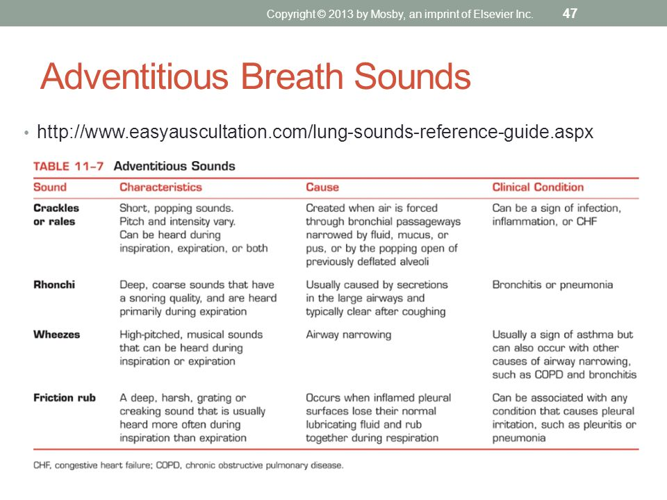 Adventitious Breath Sounds