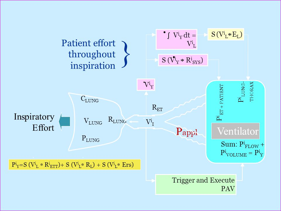 { Pappl Ventilator Patient effort throughout inspiration .