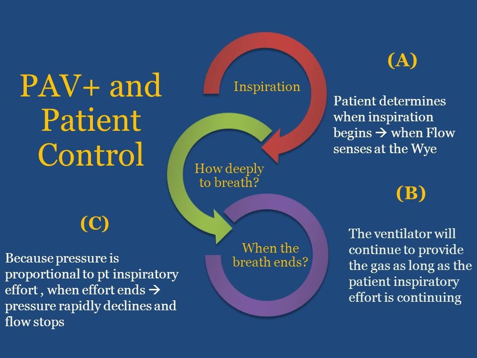 PAV+ and Patient Control