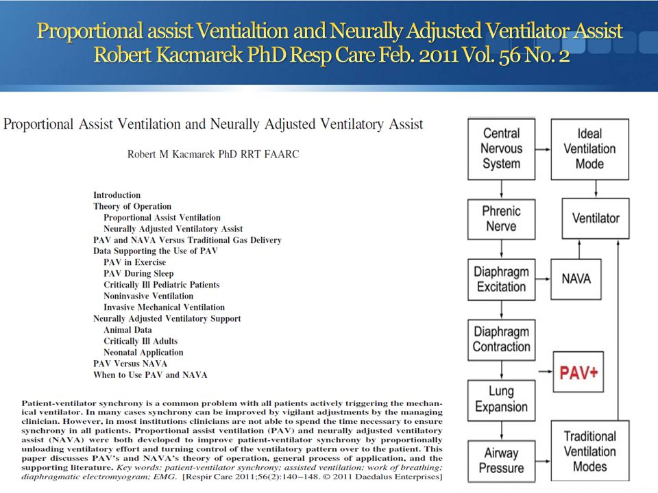 Proportional assist Ventialtion and Neurally Adjusted Ventilator Assist Robert Kacmarek PhD Resp Care Feb. 2011 Vol. 56 No. 2