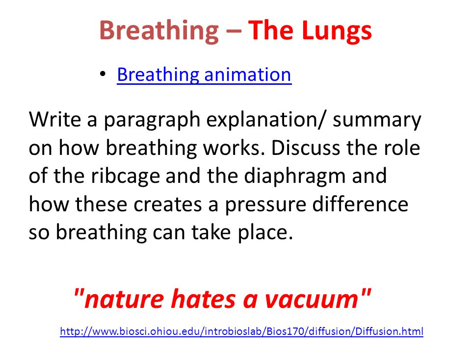 Breathing – The Lungs nature hates a vacuum