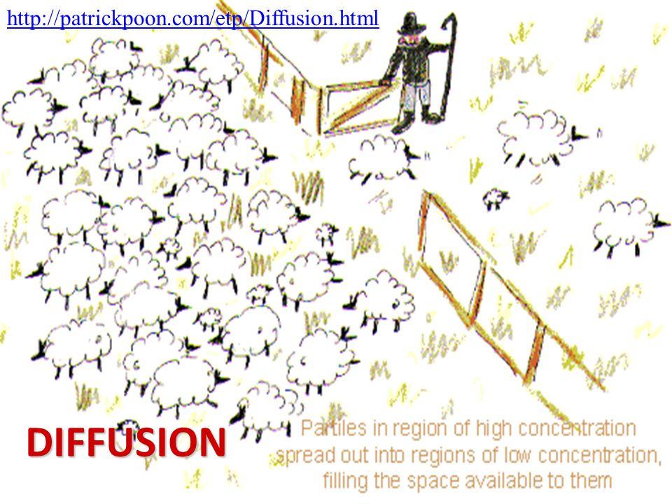 http://patrickpoon.com/etp/Diffusion.html DIFFUSION
