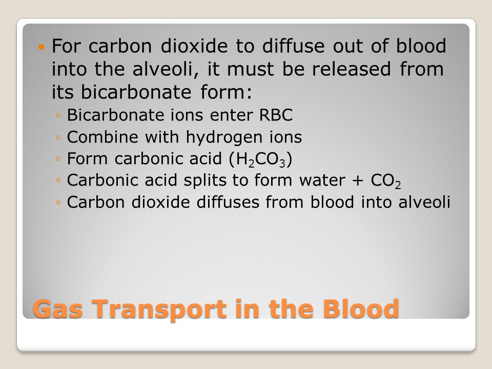 Gas Transport in the Blood