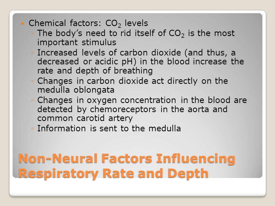 Non-Neural Factors Influencing Respiratory Rate and Depth