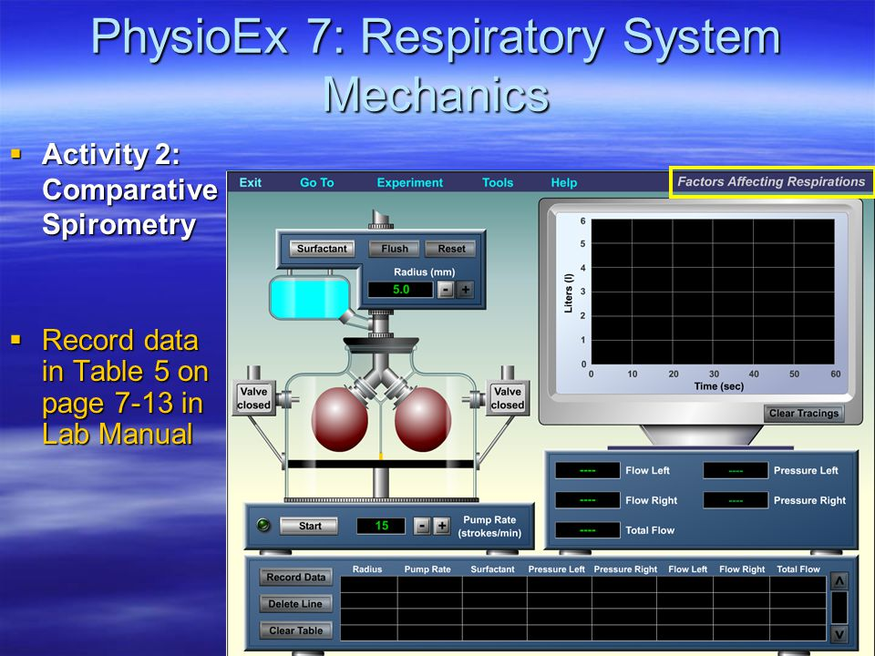 PhysioEx 7: Respiratory System Mechanics