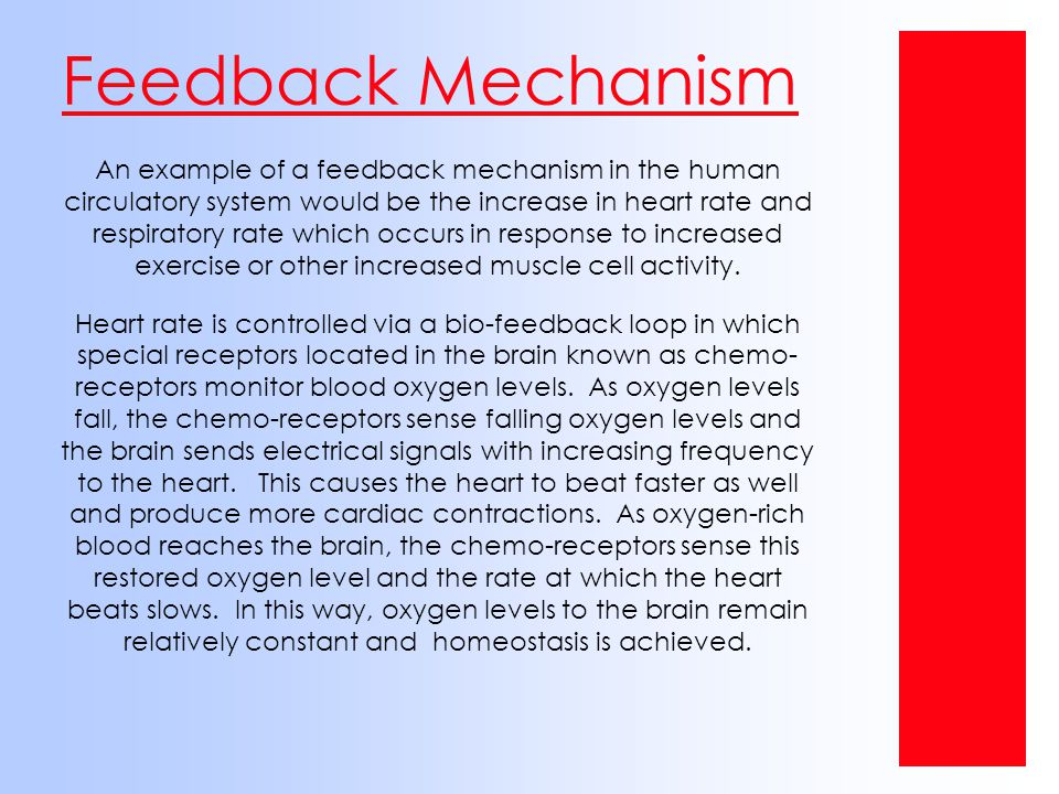 Feedback Mechanism