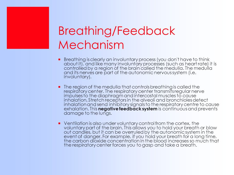 Breathing/Feedback Mechanism